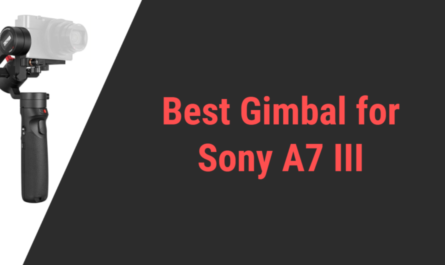 Best 5 Gimbal for Sony A7 III in 2020 | Reviews
