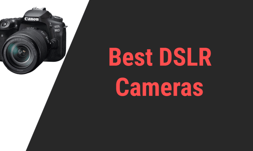 Best DSLR and Mirrorless Cameras in 2020 | Reviews